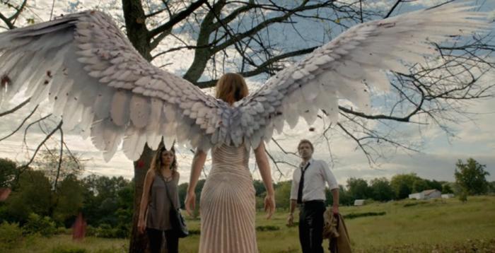 wings of Imogen