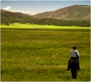 wc Longmire horse field