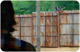 silk Carl watches Enid go over fence The Wlaking Dead Remember