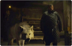 Ghost Sam Game of Thrones The Gift
