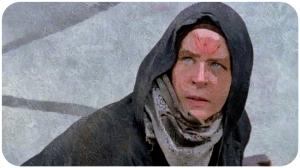 Carol as Wolf The Walking Dead JSS