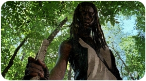 Michonne The Walking Dead Thank You