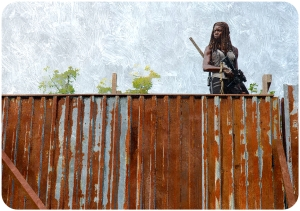 Michonne (Danai Gurira) The Walking Dead The Next World