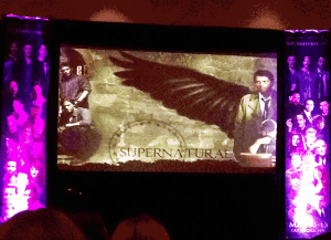 One of the two stage-side screens at vegascon.