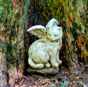 Lily Dale Pet Cemetery cat angel