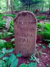 Lily Dale Pet Cemetery Checker