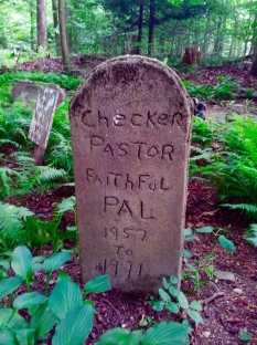 Lily Dale Pet Cemetery Checker