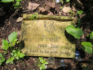Lily Dale Pet Cemetery Fred