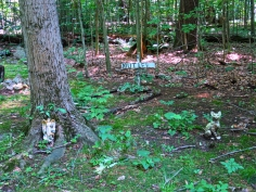 Lily Dale Pet Cemetery Mutt Lee