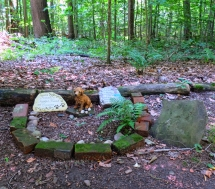 Lily Dale Pet Cemetery red dog