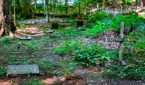Lily Dale Pet Cemetery Smokey