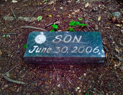 Lily Dale Pet Cemetery Son