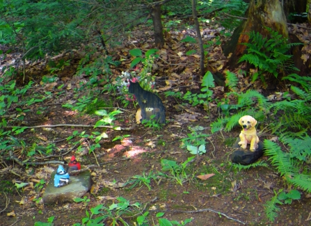 Lily Dale Pet Cemetery Sop