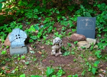 Lily Dale Pet Cemetery Sox