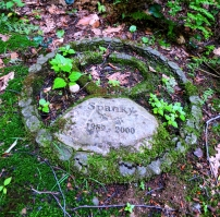 Lily Dale Pet Cemetery Spanky