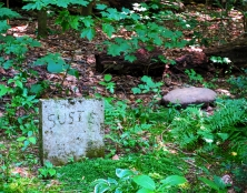 Lily Dale Pet Cemetery Susie