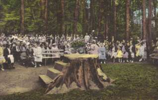 Lily Dale spiritualist practices Inspirational Stump postcard