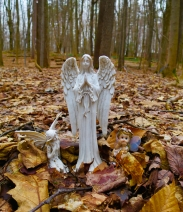 lily-dale-fairy-trail-2-angel-and-fairies