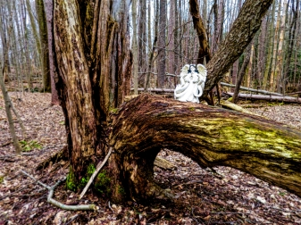 lily-dale-fairy-trail-2-angel-on-tree