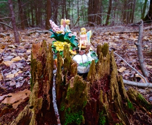 lily-dale-fairy-trail-2-colored-angels
