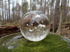lily-dale-fairy-trail-2-crystal-ball-cu