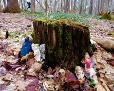 lily-dale-fairy-trail-2-faires-around-log