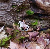 lily-dale-fairy-trail-2-fairy-riding-unicorn