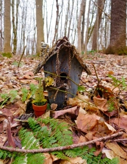 lily-dale-fairy-trail-3-wooden-house
