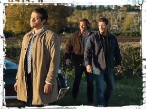 cas-sam-dean-supernatural-lotus