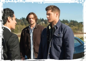 ss-dean-sam-supernatural-lotus