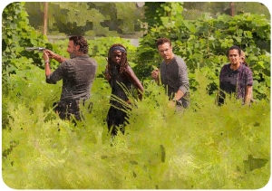 rick-michonne-aaron-tara-the-walking-dead-rock-in-the-road