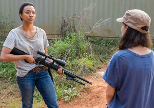 Sasha Rosita The Walking Dead The Other Side