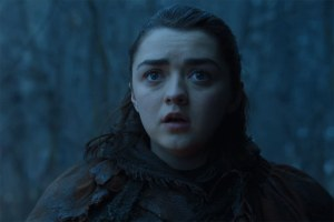 Arya Stark sees Nymeria Game of Thrones Stormborn