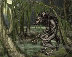 Rougarou-Swamp