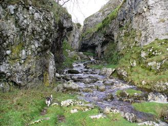 Troller's Gill, a gorge in Yorkshire said to be haunted by a barghest